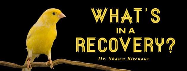 , What's In a Recovery?