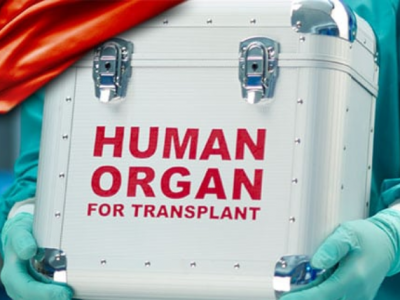 "China's Traffic in ""Donated"" Organs: Some Implications"