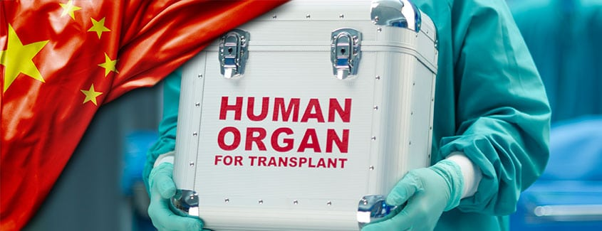 ", China's Traffic in ""Donated"" Organs: Some Implications"